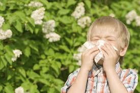 boy with allergy